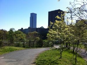 Il Mount Sinai Medical Center visto da Central Park, attraversamento sud.