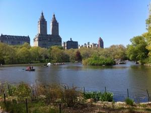 Foto: scorcio da Central Park south (by Paolo Mazzola, riproduzione vietata)